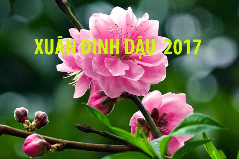 Bộ trưởng Bộ TT&TT ban hành Chỉ thị số 02 về việc tổ chức đón Tết Nguyên đán Đinh Dậu 2017